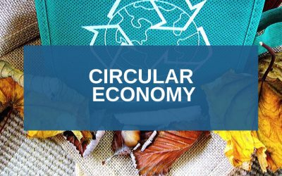Circular Economy and EU funding: opportunities for companies