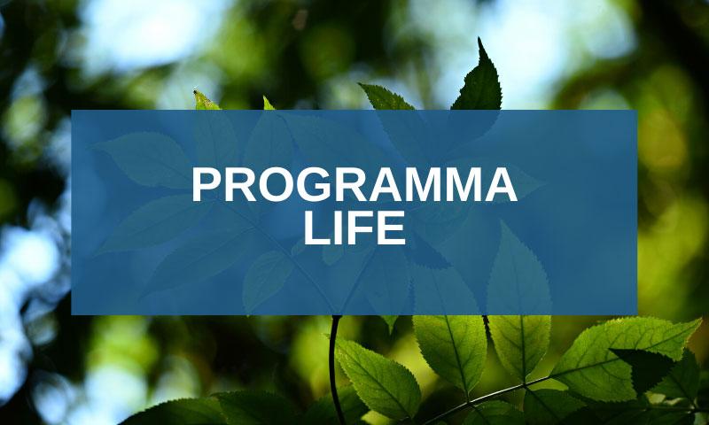 Bando Life: progetti per l'ambiente e per il clima