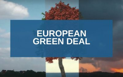 European Green Deal: opportunities for companies